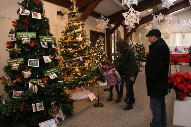 The 42nd Festival of Trees is seeking individuals and groups to create holiday decorations for display at the Environmental Education Center in December.