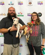 """Amore Pets is the winner of the """"Best Pet Groomer"""" category."""