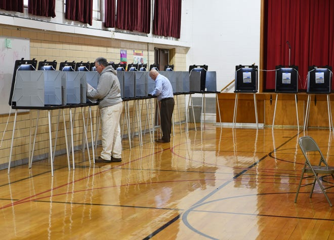 Voters cast their ballots at Forest Park Elementary School in Eastpointe., November 5, 2019.