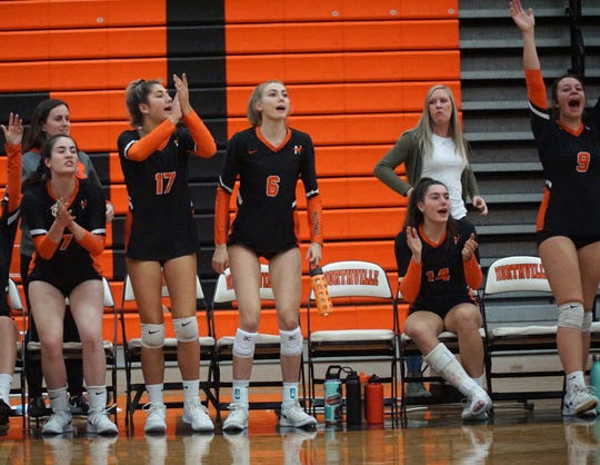 The Northville bench rises to its feet to celebrate a point against Canton.