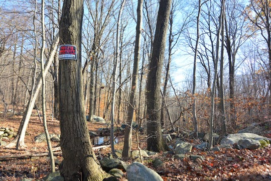 "If you see these ""No Trespassing"" signs, you're in the right spot on the trail to King's Chamber and Moose Hill."