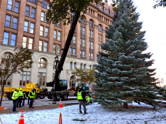 City workers move the 2019 City Christmas tree into position next to Milwaukee City Hall on Nov. 7.  The 35-foot Colorado Blue Spruce was donated by Daisy McGregor. A lighting ceremony is Nov. 21.