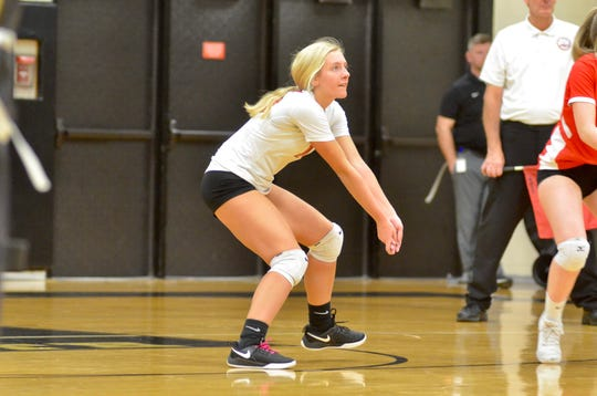 Port Huron's Paige Murdick prepares to dig the ball during the Division 1 volleyball district semifinal Wednesday, Nov. 6, 2019, at Macomb L'Anse Creuse North.