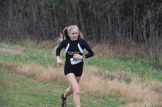 Annika Fisher, seen here running in the Shenandoah District cross country meet, won the Region 2B girls meet Wednesday in New Market.