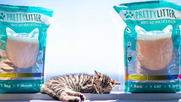 Best cat gifts 2019: Pretty Litter