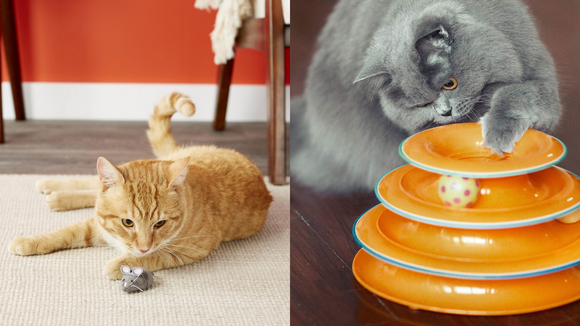 Best cat gifts 2019: These are the best gifts for anyone who absolutely adores cats.