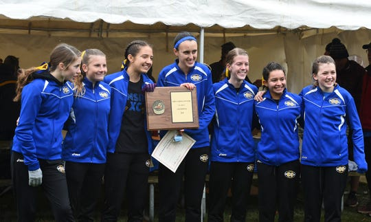 Lansing's girls captured the Class C title on Thursday as the area's runners competed in the Section 4 cross country championship at Chenango Valley State Park, November 7, 2019.