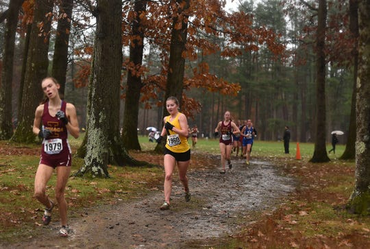 Top runners compete during the Section 4 cross country championship at Chenango Valley State Park, Thursday, November 7, 2019.
