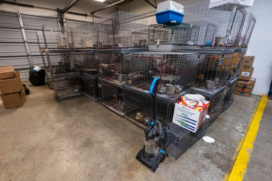Many of the dogs rescued by St. Clair County Animal Control were stored in wire cages that were stacked on top of each other.