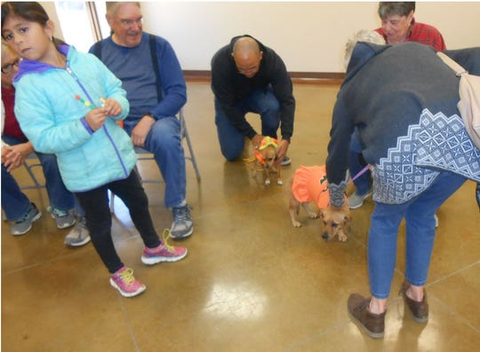 The sixth annual Pumpkin Festival hosted by the People/Plant Connection in San Angelo included a Pup-kin Costume contest for furry friends.