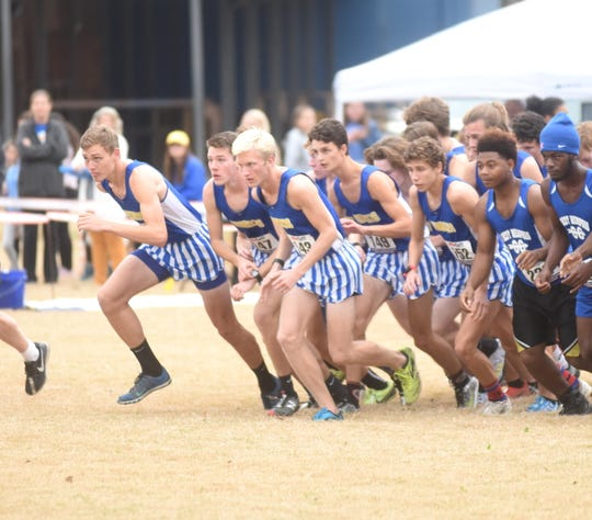 Mountain Home Bombers take off at the start of the recent 5A-East Conference meet. The Bombers won the Class 5A State cross country championship on Saturday in Hot Springs.