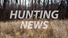 Police chief's stepson in viral deer beating video