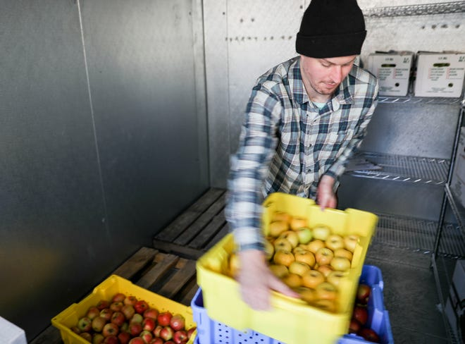 Bryan Bjorklund, program associate, stacks trays of apples grown at Buffalo Ridge Orchard in Central City before they are distributed to a nursing home at the Food Hub in Iowa City on Thursday, Oct. 17, 2019. The hub acts as a broker between small-scale farms looking to fill gaps in the local market, such as local schools or nursing homes who want to serve fresh produce.