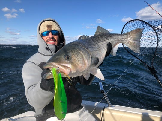 Andrew Whiting of Brielle, with a striped bass landed Nov. 8, 2019 on his boat 8 Knots.