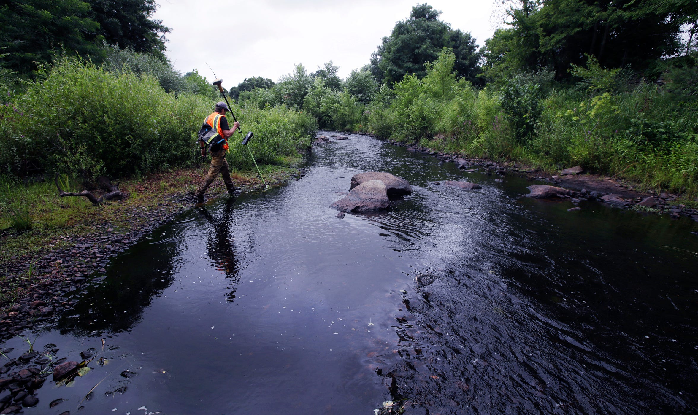 A surveyor walks the banks of the Mill River, at the site of the former Whittenton Pond Dam, just upstream from downtown Taunton, Mass., July 25, 2018. The dam was removed following concerns that the 170-year-old plus structure could fail, after it buckled and nearly failed in 2005. (AP Photo/Charles Krupa)