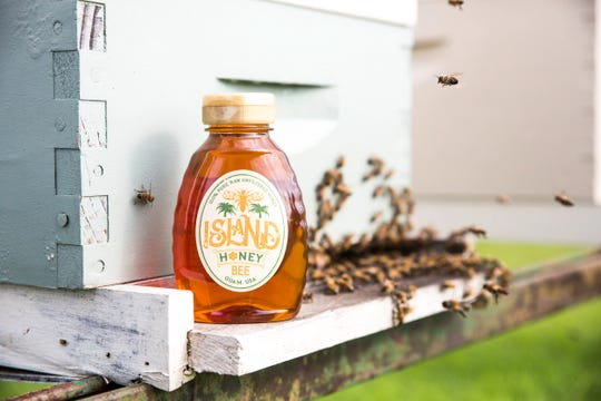 Island Honey Bee is the result of age-old beekeeping practices and new technology.