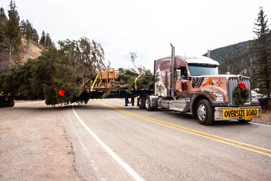 Wilbanks Trucking Services in Artesia is hauling the Capitol Christmas tree from New Mexico to Washongton D.C.