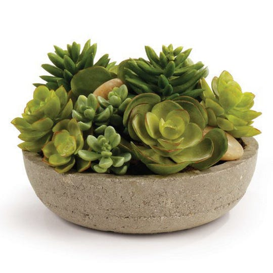 Spruce up your home with an indoor plant. Enjoy a lush arrangement with potted mixed succulents.