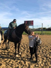 Monnie Goetz rides Harley, an American Sugarbush Harlequin Draft horse whose job it is to escort thoroughbred racehorses through the post parade and on to the starting gate, while Zulema Dewitz takes a photo from the ground.