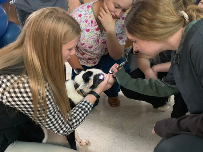 Polytech Career & Technical High School is accepting applications now from eighth-graders who want to join next fall's full-time Animal Science Program.