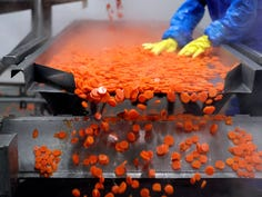A Lakeside Foods employee processes carrots oat the company's plant in Manitowoc.  The company is one of the largest private-label processors of carrots and other vegetables in the United States.