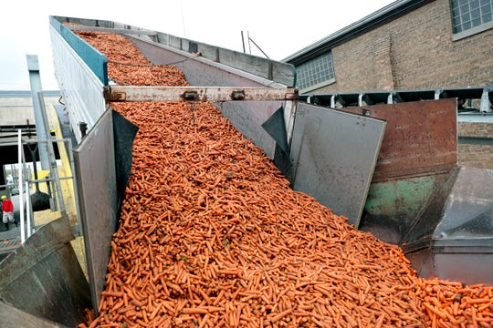 Carrots are brought into Lakeside Foods to be processed at the original site in Manitowoc. The company has grown to include 13 production facilities, mostly in Wisconsin.