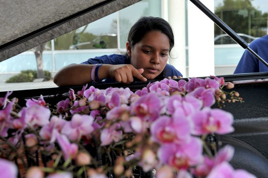 Ester Mendez-Maldonado organizes orders for orchids during the Everett Alvarez Interact Club's Wendy Baker Day fundraiser at Natividad Oct. 11, 2019.