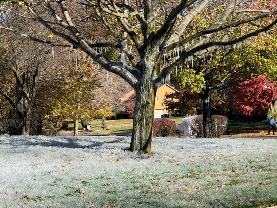 This lawn in Holmdel was covered in ice after an errant sprinkler on Falcon Ridge Circle started firing off water. Wednesday, Nov. 13, 2019