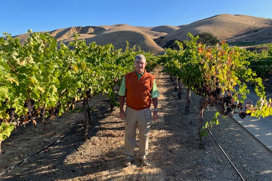 In this Oct. 4, 2019 photo, Eric Wente, chairman of Wente Vineyards, stands in vineyards at his family-run winery, which was founded by his great grandfather in 1883 in Livermore, Calif.  Caught in the crossfire of President Donald Trump's trade war with China, U.S. vineyards are struggling to sell Syrah in Shanghai and Chardonnay in Shenzhen. They risk losing their foothold in one of the world's fastest-growing wine markets. Among the casualties is California's Wente Vineyards, that was among the first U.S. winemakers to export to China 25 years ago.  (AP Photo/Terry Chea)