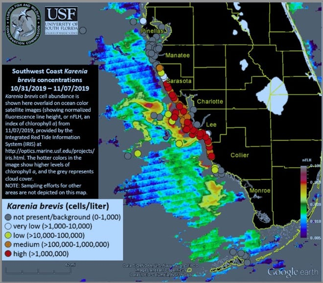 Toxic Algae In Florida Map Red tide Florida: Toxic algae bloom returns to southwest beaches