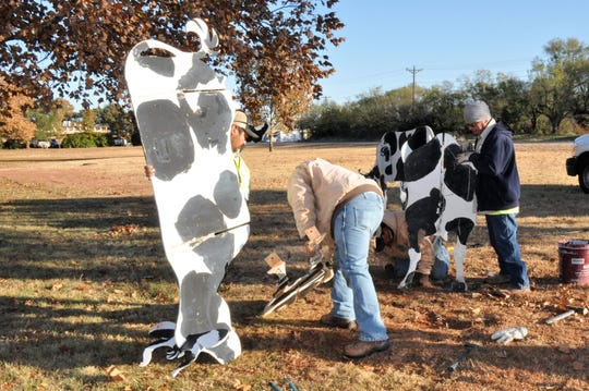 City of Abilene workers make repairs on the black-and-white metal cow sculptures on Thursday. A car recently struck some of the statues near Fire Station No. 6 at 1482 S. Danville Drive on the east side of Winters Freeway.