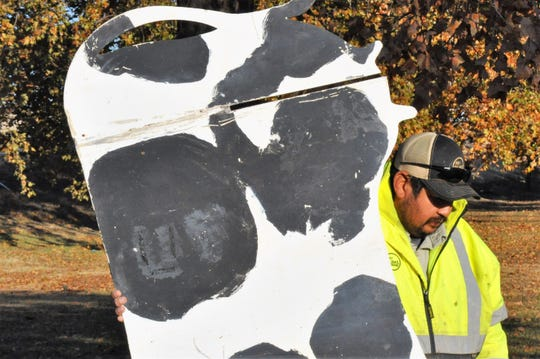 City employee Ricardo Chavarria holds up a metal cow sculpture while repairs are made to its base on Thursday.