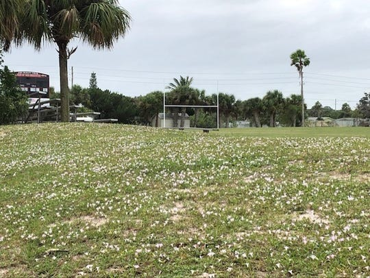 "It's not quite the frozen tundra of Lambeau Field, but this field in Indian Harbour Beach has plenty of ""Florida Snow."""
