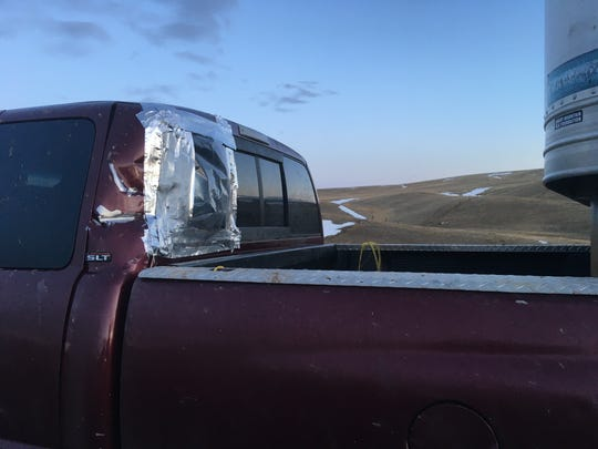Lisa Schmidt's truck took a hit from the trailer, but it still took the cows to the sale.