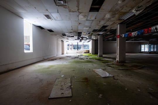 Ceiling tiles have fallen to a mossy carpet in the former Art Van building in Port Huron.