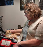"Pam Harrison pets ""Imp"", a cat whose owner lost him while visiting Wichita Falls from Washington. Harrison found him a few days after his owner had to return home to Washington."