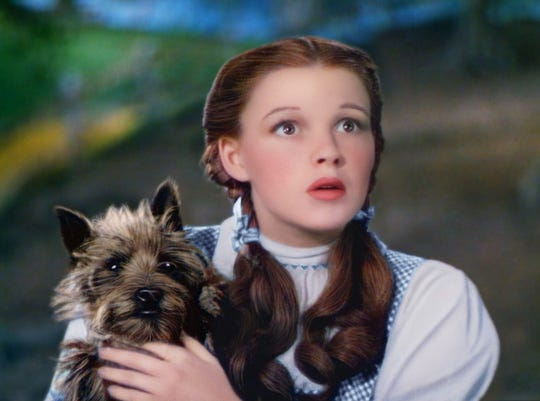 """Judy Garland as Dorothy in """"The Wizard of Oz"""""""