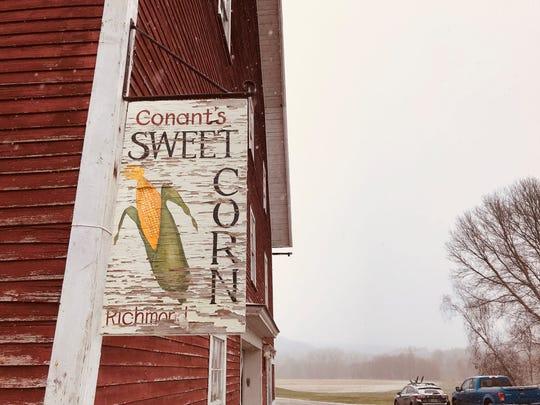 The Conant Farm sells sweet corn and pumpkins in season.