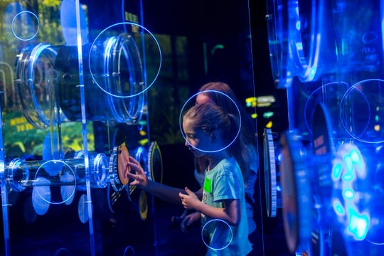 Kaylee Tryon, 4, interacts with a smell exhibit during a preview event featuring Victoria, the largest and most complete touring T. rex in the world Friday, Nov. 15, 2019, at the Arizona Science Center.