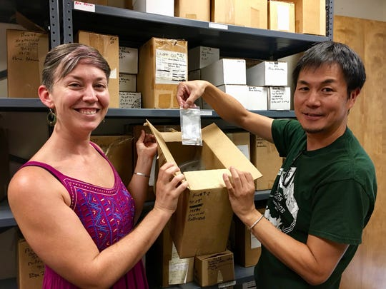 Kelly Jenks and Fumi Arakawa, professors in the Department of Archaeology, are part of an interdisciplinary team of archaeologists and botanists from NMSU that have been awarded a 25,000 dollar grant from the New Mexico Bureau of Land Management to study the domestication of corn in the southwest.