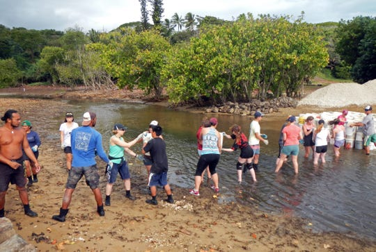New Mexico State University students work on Hawaii's Paepae o He'eia fish pond restoration during their 2016 Sundt Seminar trip to study the effects of climate change on coral reefs. Next spring, Sundt Seminar students will study food and culture in the Southwest.