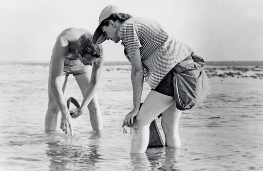 Scientist and author Rachel Carson worked with Bob Hines, a wildlife artist with the U.S. Fish and Wildlife Service, while conducting research off the Atlantic coast in 1952.