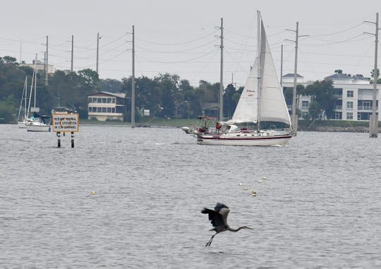 Birds and boaters on the Indian River in Cocoa during the cold weather of Sunday, November 17.