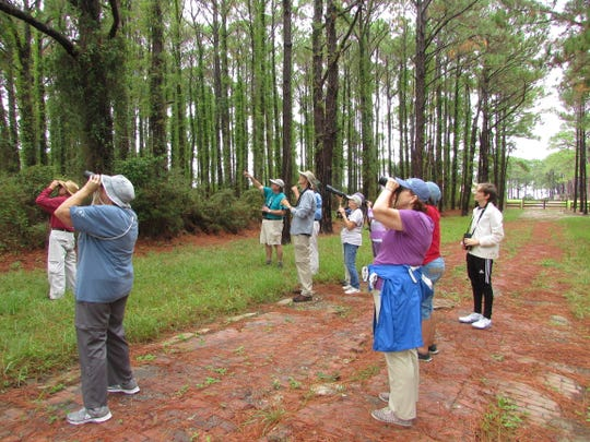 A birdwatching group explores avian ecosystems at Fort Pickens in an undated photograph.