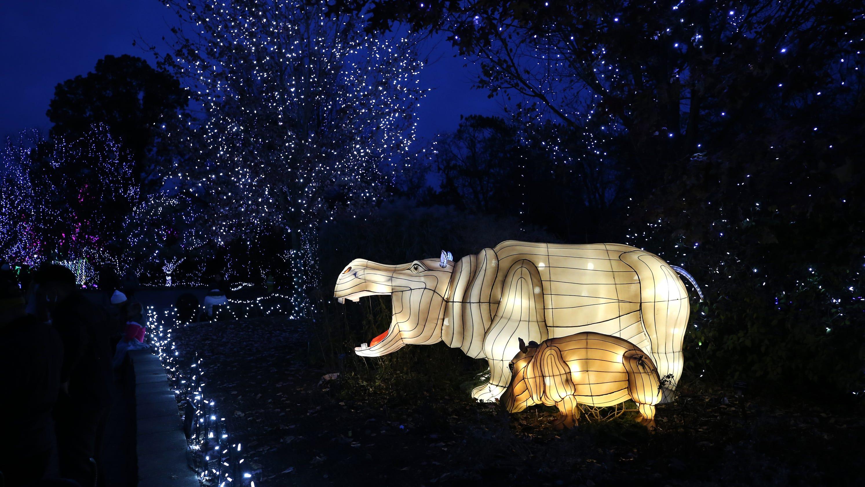 Cincinnati Zoo's PNC Festival of Lights