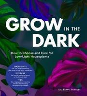 """Lisa Steinkopf's """"Grow in the Dark"""""""