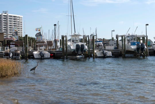 A new $2 million project approved under the RESTORE Act implementation plan would help restore Little Sabine Bay.