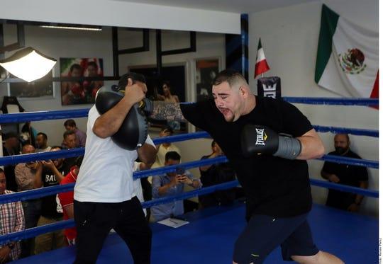 Andy Ruiz trabaja a marchas forzadas de cara a la pelea de revancha con Joshua.
