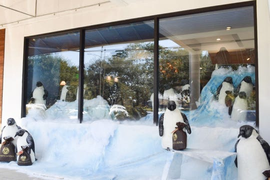 Hearth & Soul unveiled its holiday window on Monday. The store is partnering with SeaWorld to bring live penguins to Tallahassee on Tuesday, Dec. 3. They will be in the store, backed up to the Antarctica Wonderland from 3-7 p.m. for local residents to come see, and then will go to TMH on Wednesday, Dec. 4.