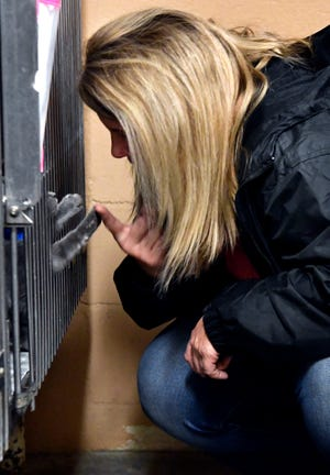 Former Abilene Animal Services director Tammy Roberts interacts with a cat at the Abilene Animal Shelter on Nov. 19.